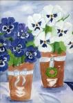 blaue und weiße Stiefmütterchen im Topf