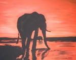 Elefant in der Abenddämmerung