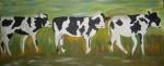 Wanderschaft der Kühe