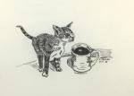 Katzepause.jpg