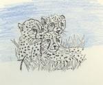 Leoparden drei.jpg