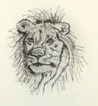 Löwenkopf.jpg
