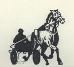 Pferdesport.jpg