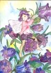Glockenblumenfee