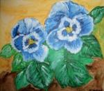 zwei blaue Stiefmütterchen