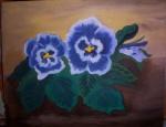 blaue Stiefmütterchen