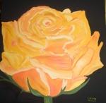 gelbe Rose für Wilfried